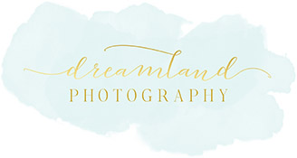 Dreamland Photography Destination & Miramichi Wedding Photographer
